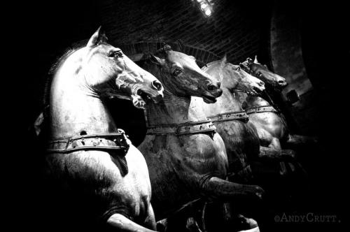 Final Pic Bronze Horses
