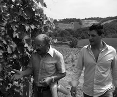 vineyard men
