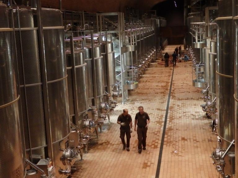 The fermentation cellars