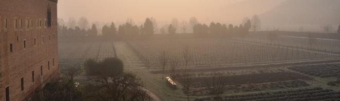 Fog swirls around the Abbey