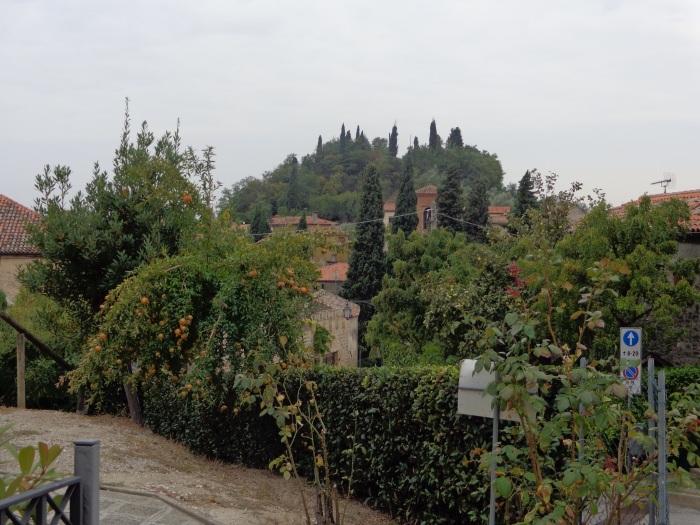 Hills surrounding the neighborhood