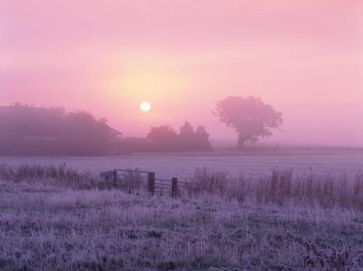 Sunrise Over Frosty Farmland, Norfolk, England
