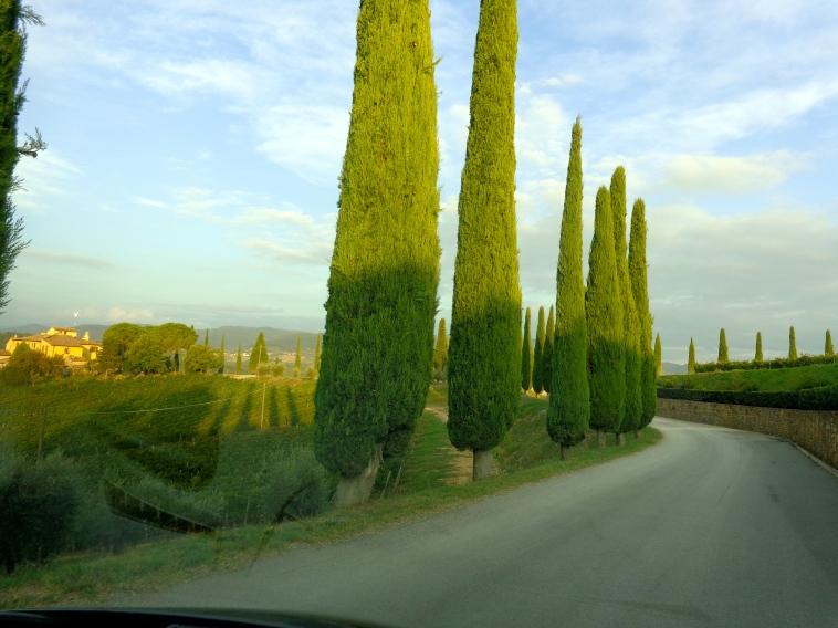 Veneto Countryside