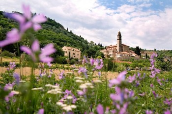 Meadow near Arqua Petrarca
