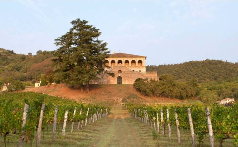 Villa winery in the Euganean Hills