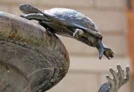 Rome Turtle Fountain